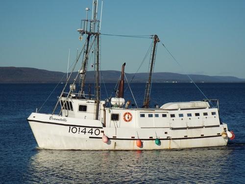 Hazelton Fisheries