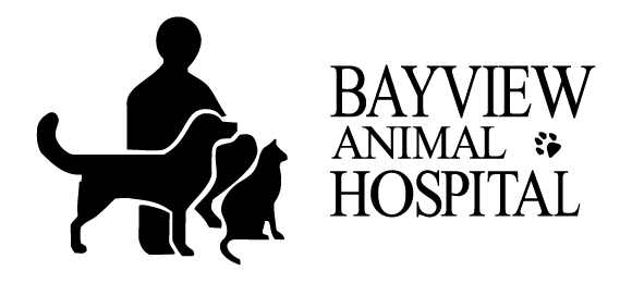 Bayview Animal Hospital